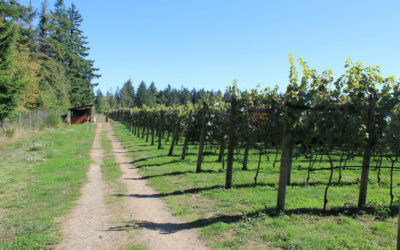 Wine Tasting Tours mentioned in Western Living Magazine